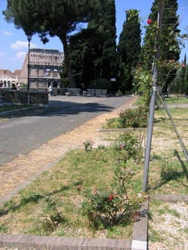 Roma - Il Roseto al ColleOppio