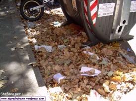 Le foglie morte