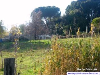 VillaBonelli