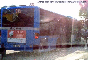 autobus-blu