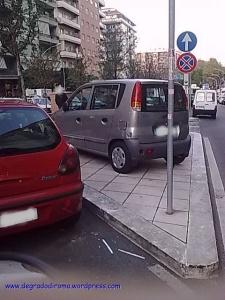 Viale Furio Camillo1